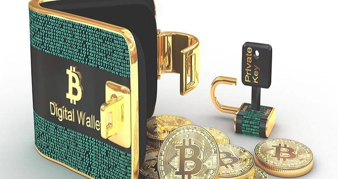 currency wallet
